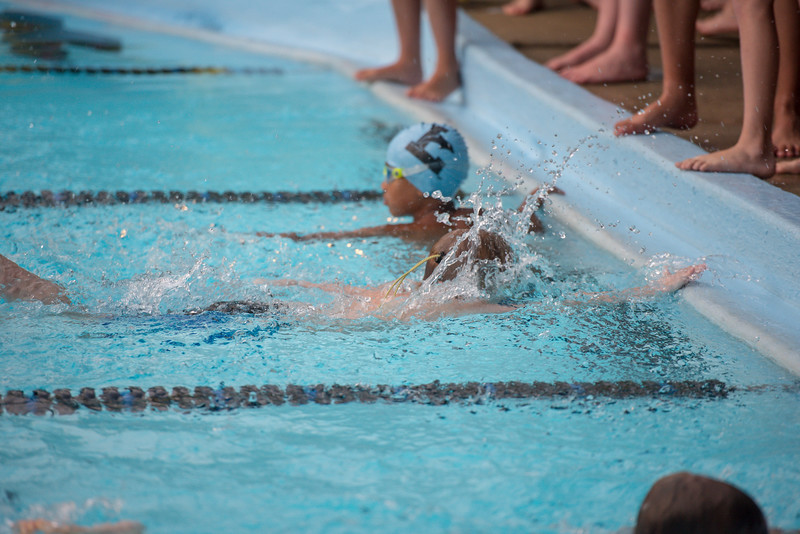 lcs_swimming_kevkramerphoto-945.jpg