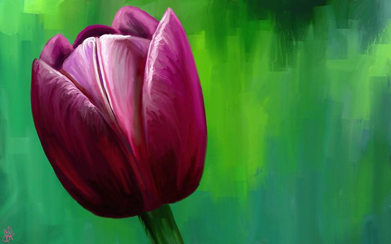tulipPtg.jpg