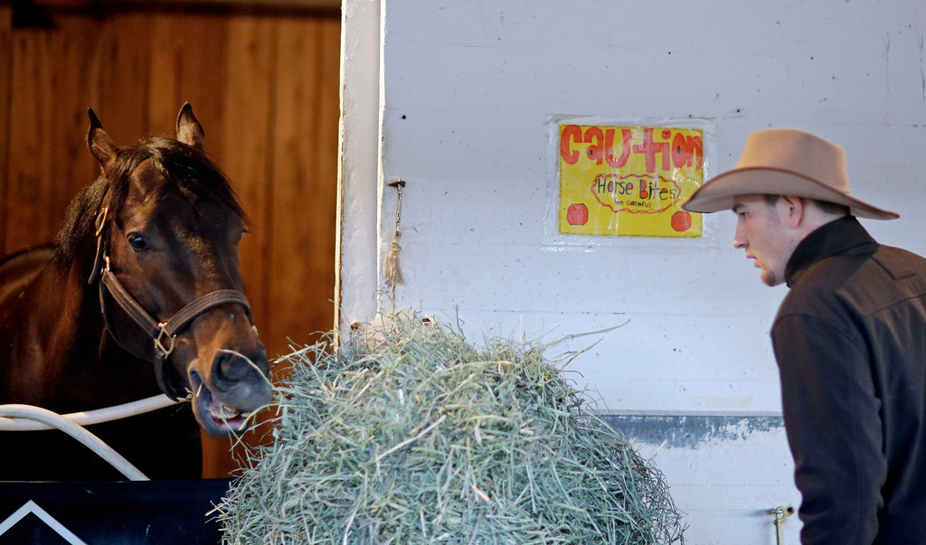. Frank Compton watches as Kentucky Derby entrant Ride On Curlin eats after a morning workout at Churchill Downs Friday, May 2, 2014, in Louisville, Ky. (AP Photo/David Goldman)