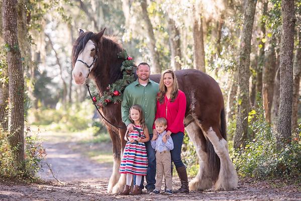 Clydesdales Nov 2018 Bushway Family