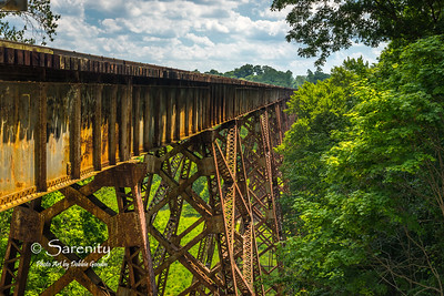 Tulip Trestle Bridge - Greene County