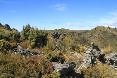 Silver Peaks Scenic Reserve