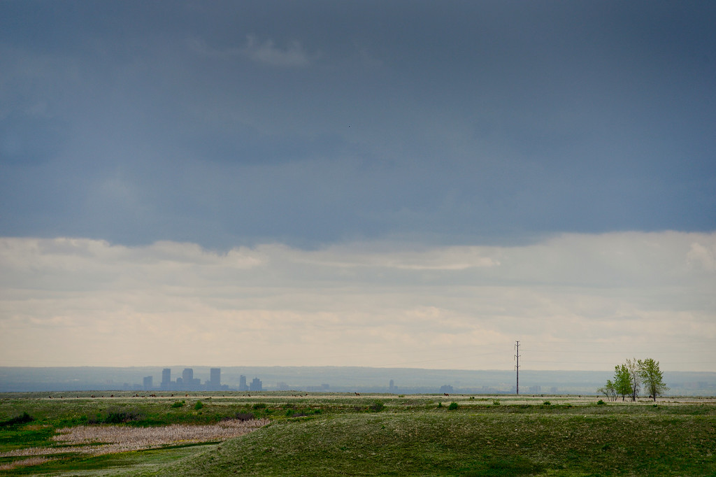 . The Denver skyline is seen from the Rocky Flats National Wildlife Refuge in Jefferson County, Colorado on May 14, 2018. (Photo by Matthew Jonas/Staff Photographer)