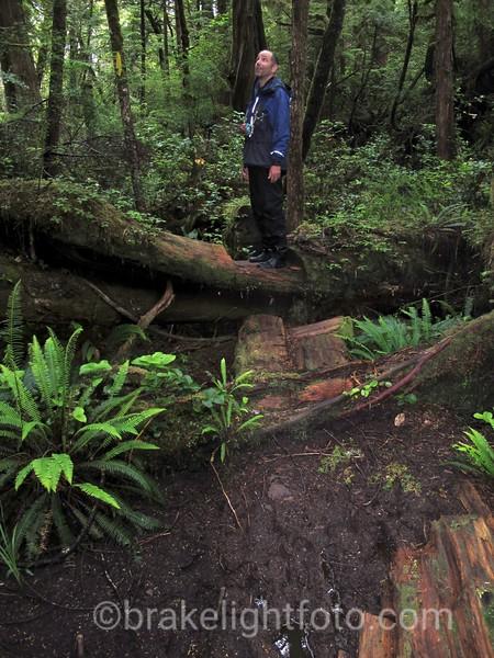 Nootka Island Trail