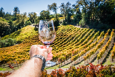 2014 Sonoma Wine Road