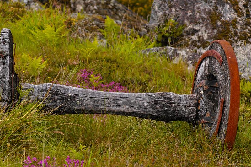 Vouzela-PR2 - Um Olhar sobre o Mundo Rural - 17-05-2008 - 7451.jpg