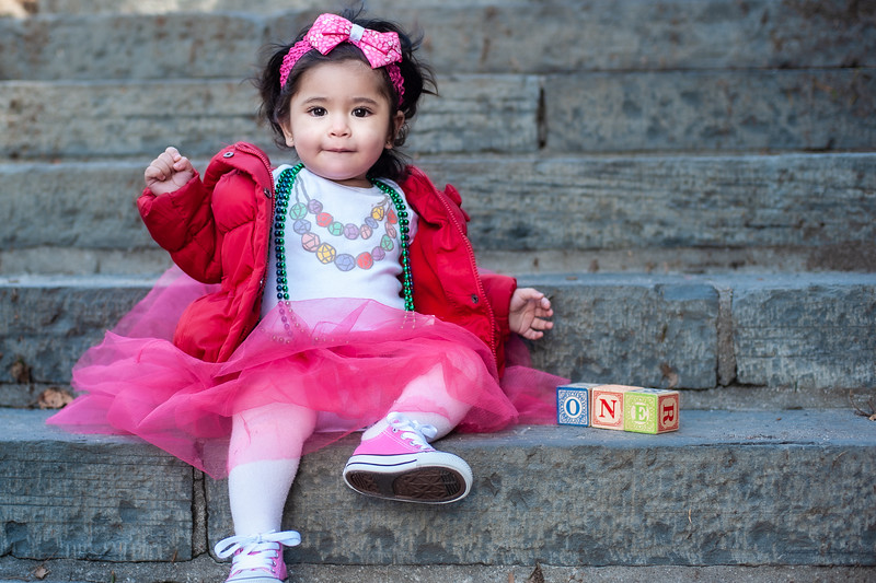leah at  1 one year old_4.jpg