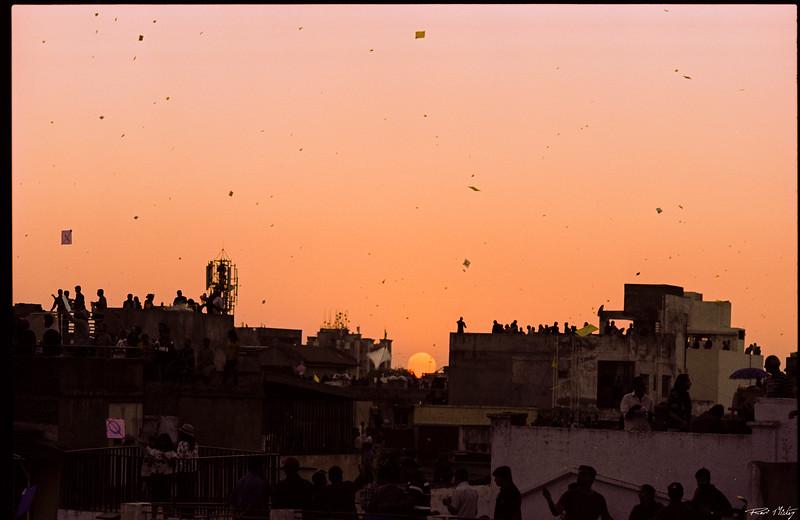 Uttarayan 2020 Ektachrome Cross 14.jpg