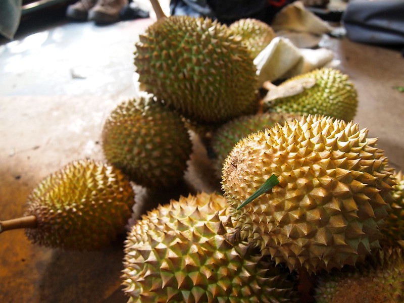 Maui-Durians.jpg