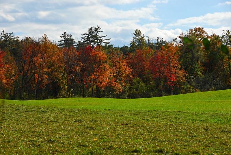 Fall Foliage along the Nashua River Trail Trail in the fall.