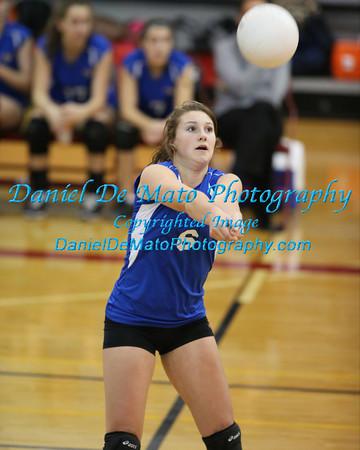 2013 Girls HS Volleyball