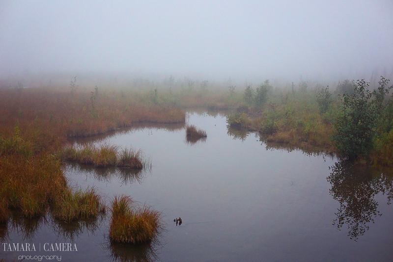 Eagle River3-5-2.jpg