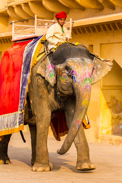 India-34.jpg
