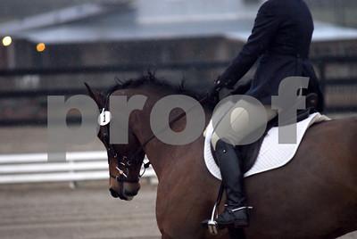 2009-03-01 USEA Horse Trial