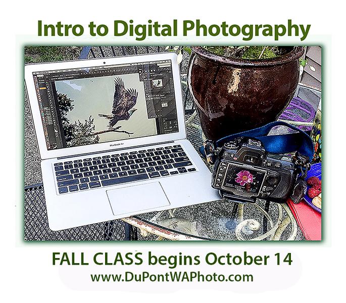 PhotoClassWEB_Oct14.jpg