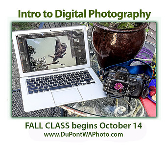 Photography Classes & Experiences