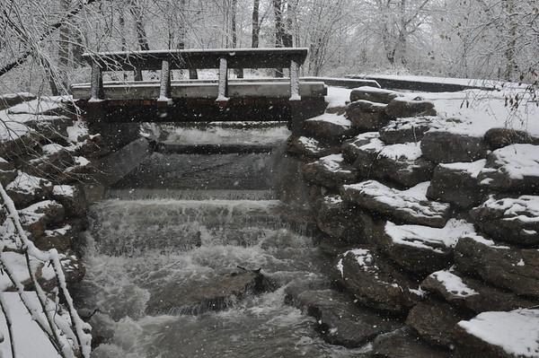 Winter Snow on 1/9/2011