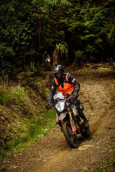 2019 KTM New Zealand Adventure Rallye (1311).jpg