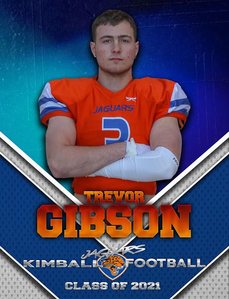 Trevor Gibson 1.0.jpg