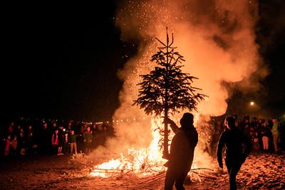 Burning Trees 2019