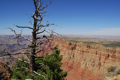 Another view from the South Rim.
