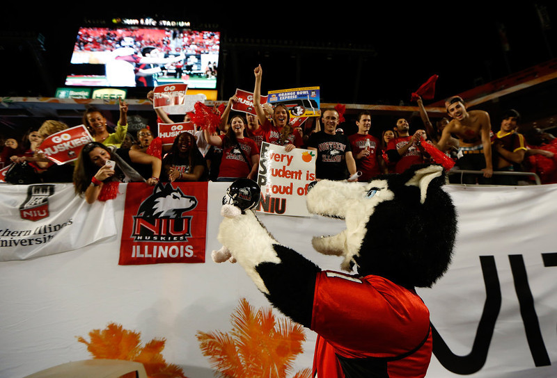. Fans and the mascot for the Northern Illinois Huskies support their team against the Florida State Seminoles during the Discover Orange Bowl at Sun Life Stadium on January 1, 2013 in Miami Gardens, Florida.  (Photo by Chris Trotman/Getty Images)