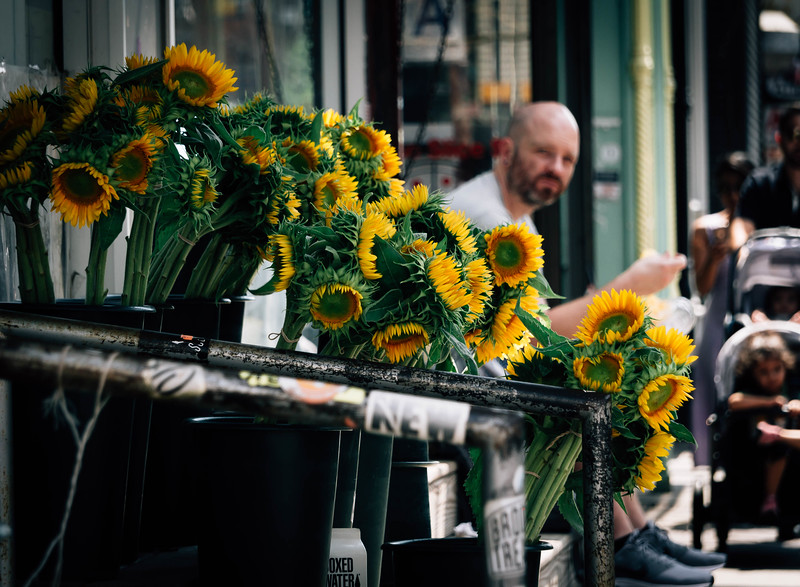 Sunflowerburg.jpg