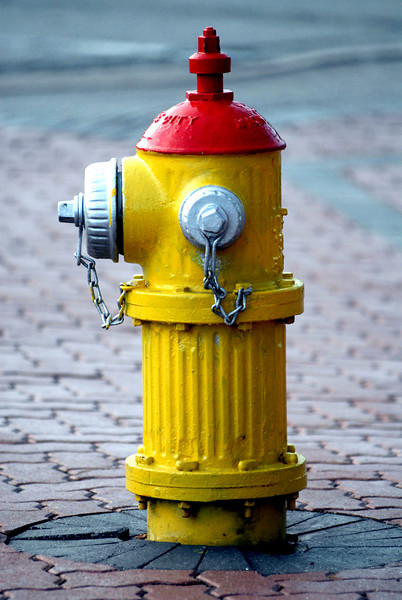Mt Prospect fire hydrant.jpg