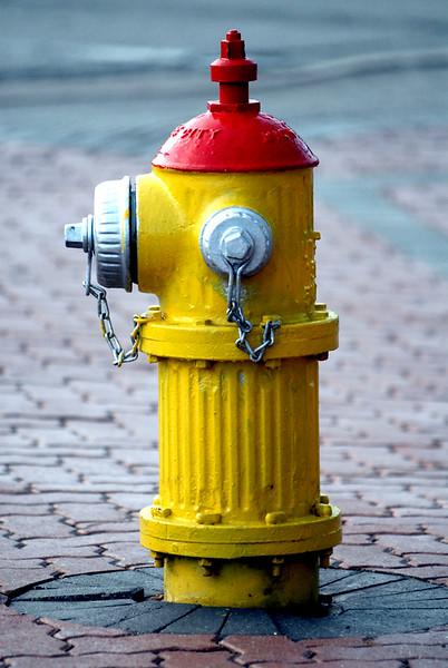 Mt Prospect fire hydrant.jpg