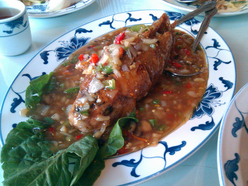 Great China - Hot Braised Tilapia
