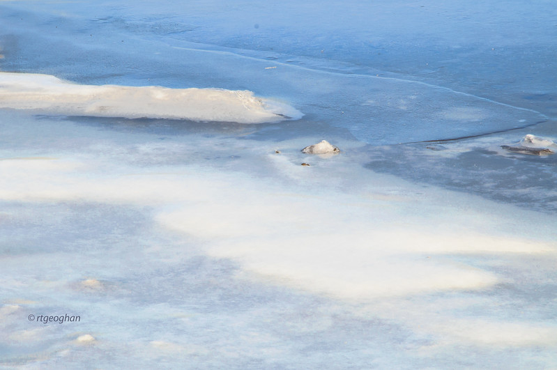 Jan 22_Abstract Frozen Marsh Water_4105.jpg