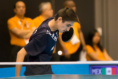Table Tennis 20150809