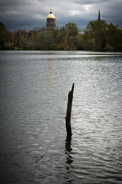 Reflection-5864.jpg