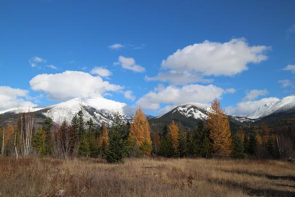 Hunting Montana 2013