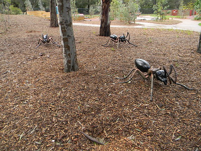 ant sculptures in garden mulch