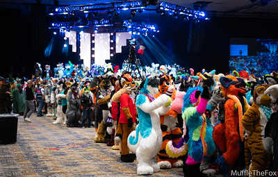 BLFC2019 Fursuit Festival