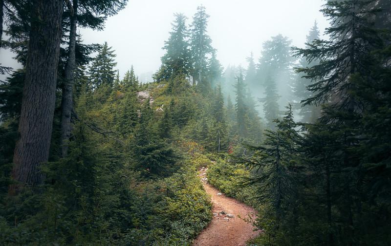 19_09_01 hike to Goat Mountain 0181.jpg