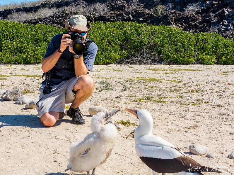 2018 Darwin's Bay Beach-33.jpg
