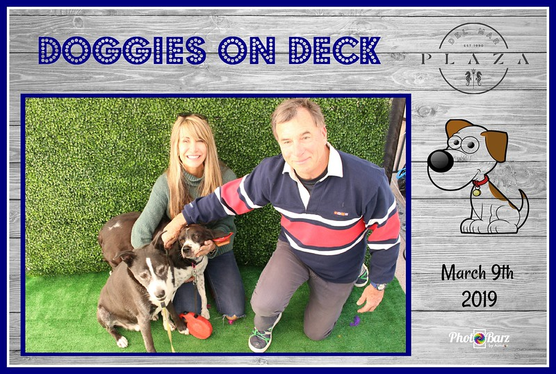 Doggys on Deck52.jpg
