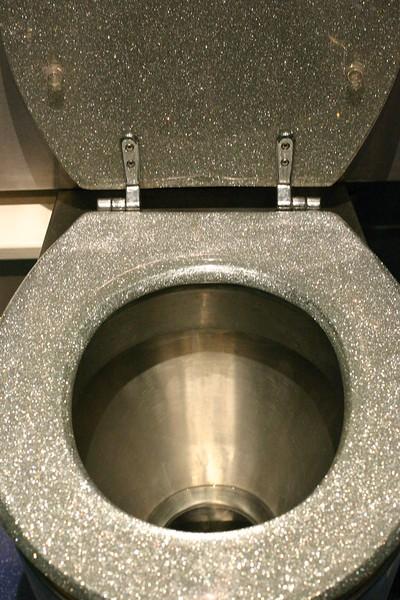 sparkly-toilet_2046243011_o.jpg