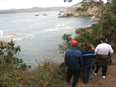 Point Lobos 12/29/06
