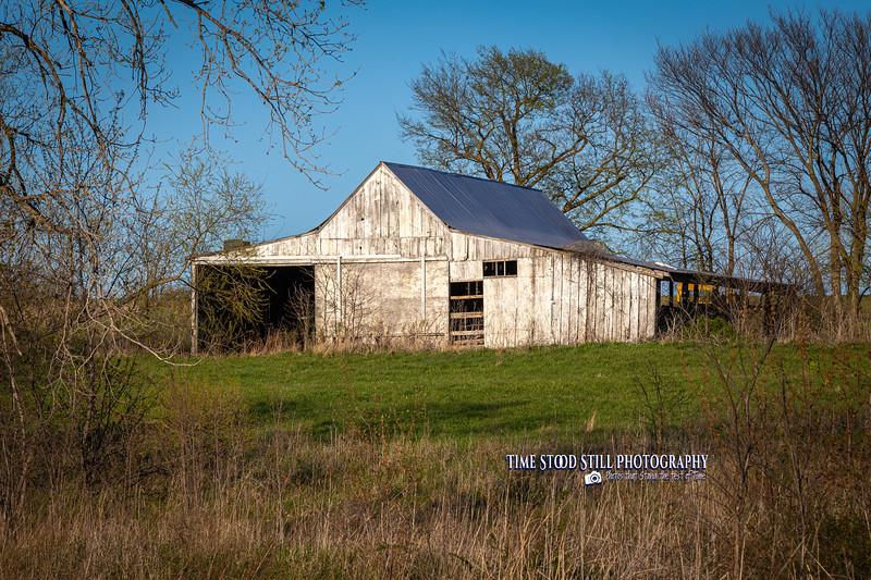 KC Landscape-10.jpg