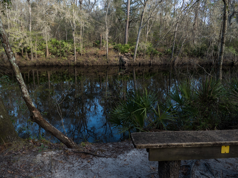 02-21--2019 Oleno River Trail (8 of 28).jpg