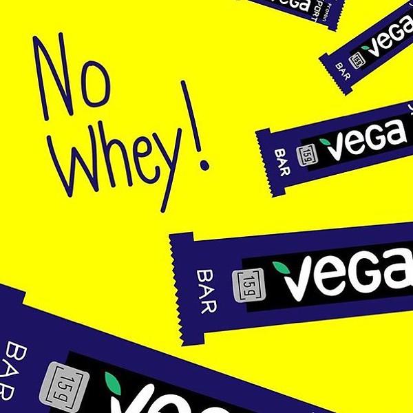 conscious-FreshGreenSmoothies_com-Vegan-Intelligent-Compassionate-raworganicvegan-plantbased-greensmoothies7183.jpg