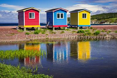 Newfoundland, Various