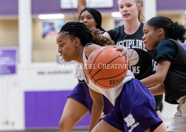 Broughton girls basketball vs Wake Forest. November 14, 2019. D4S_0180