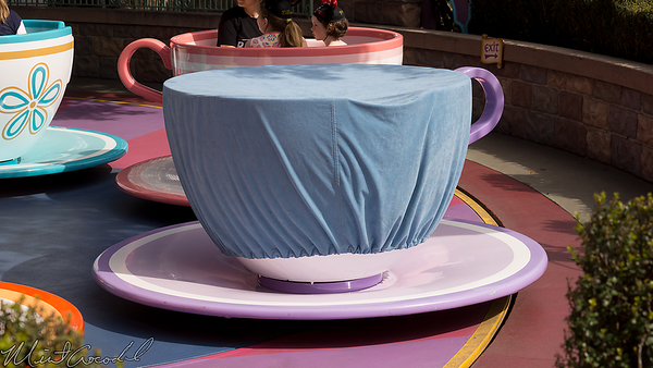 Disneyland Resort, Disneyland, Tea Cups, Tea, Cups, Mad Tea Party