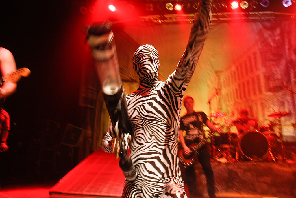 Adam Elmakias skin tight zebra suit i hope someone reads this
