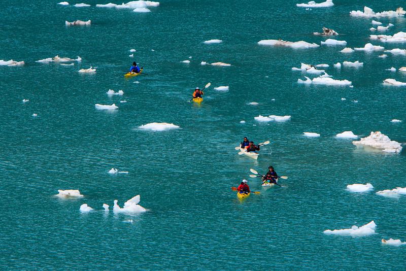 Kayaking in Glacier Bay