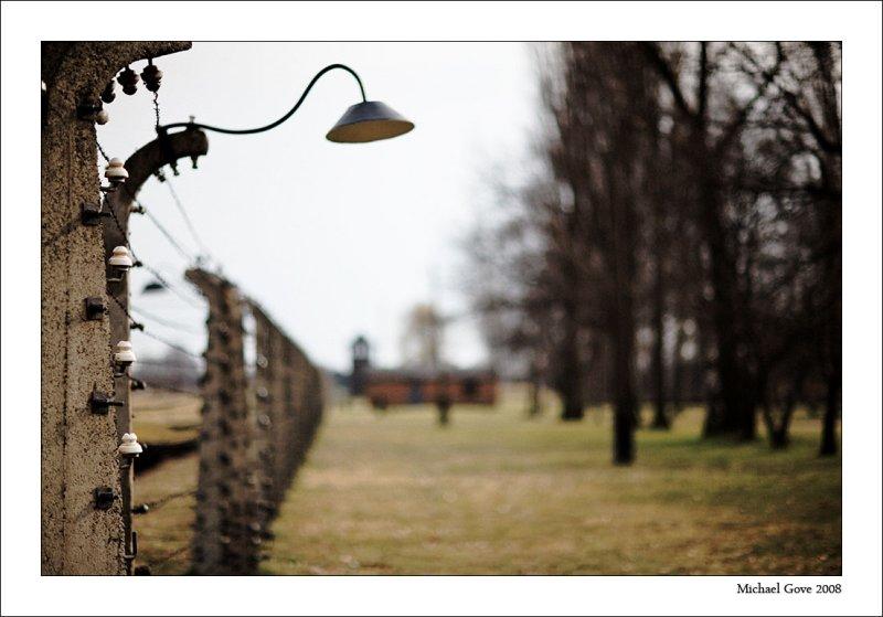 Guard towers guarding the Burkenau prisoner barracks (94618877).jpg